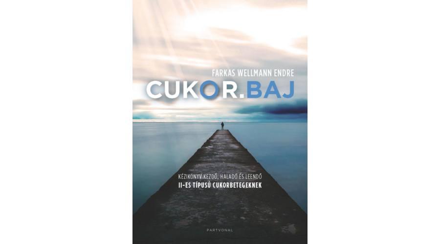 Farkas Wellmann Endre kötetbemutatója Kolozsváron